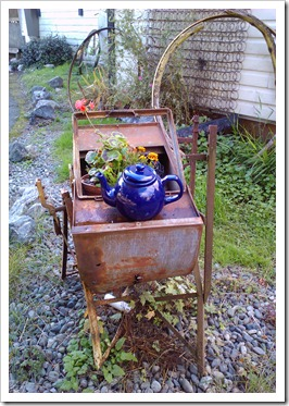A perfect teapot garden moment