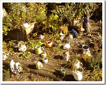 Dozens of teapots in the garden