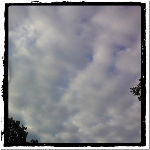 cotton batten clouds