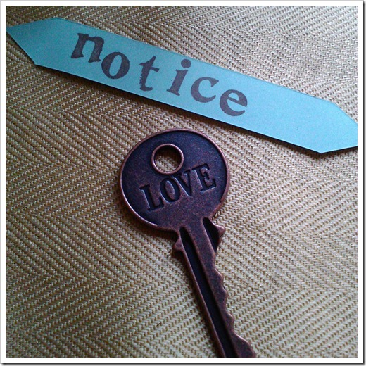 Notice Love
